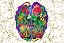 Nove znanstvene spoznaje o komunikaciji moždanih stanica